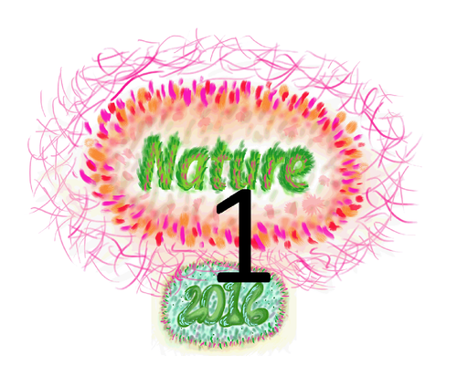 TShirt 1 Nature frente com Nr1.png