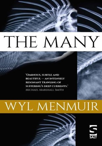 Wyl-Menmuir -The-Many.jpg