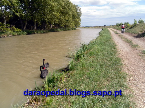 Canal_midi_dia_03_31.JPG