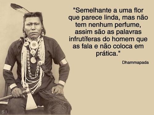 Frases Indigenas  rf (11)-721997.jpg