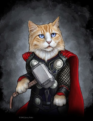 thorcat.jpg
