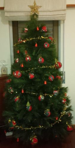 árvore.bmp