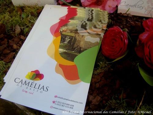 1 - XIII Festa Internacional das Camélias - Celor