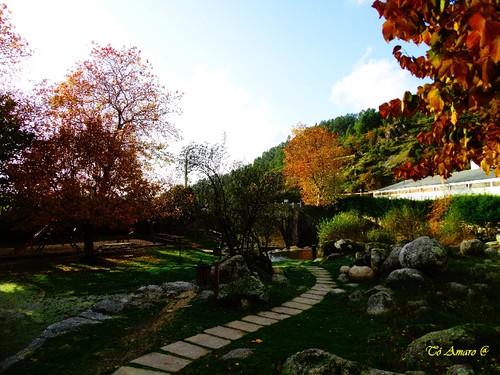 Fotos de Outono !!! 067.jpg
