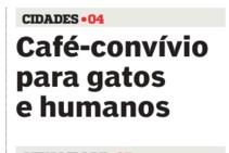 Gatos.jpg