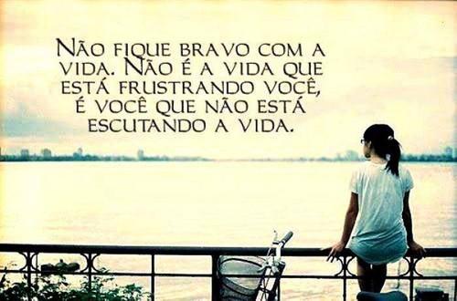 vida13.jpg