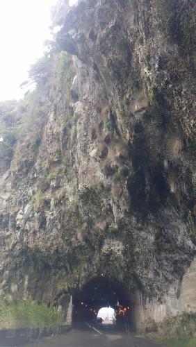Madeira (429).jpg