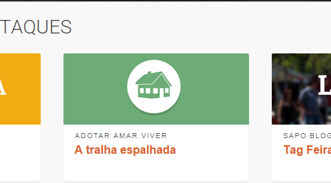 destaque sapo.png