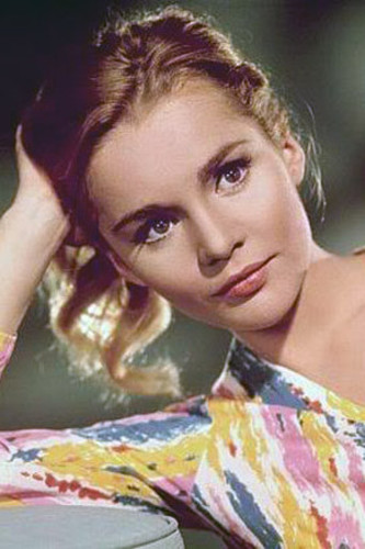 tuesday weld.jpg