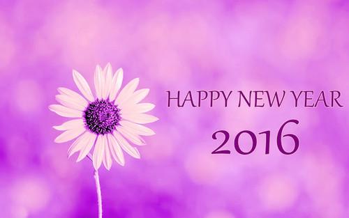 Happy New Year 2016 Image.jpg