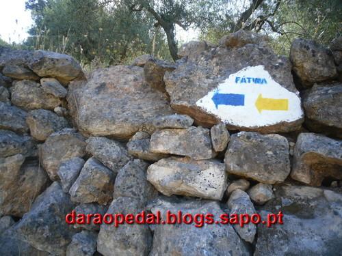 Fatima_Tomar_066.JPG