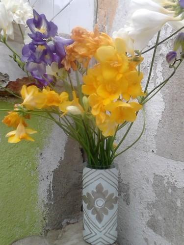 Flores do meu jardim.jpg