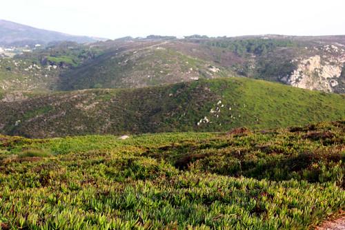 Cabo da Roca 4.jpg