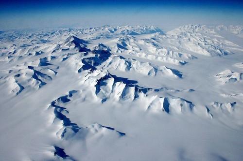 Antártida V