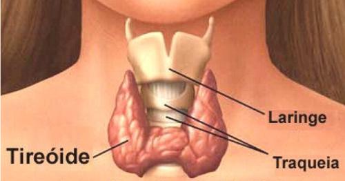 tiroide-642x336.png