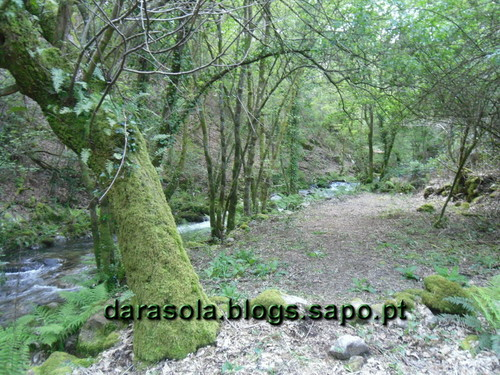 Rota_do_Gaia_10.JPG