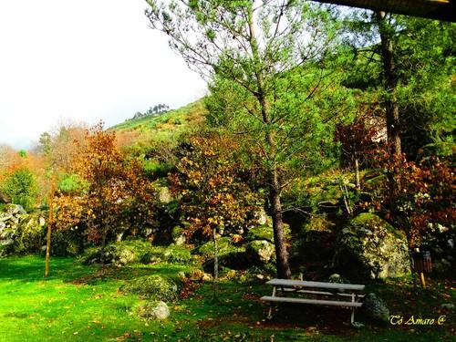 Fotos de Outono !!! 062.jpg