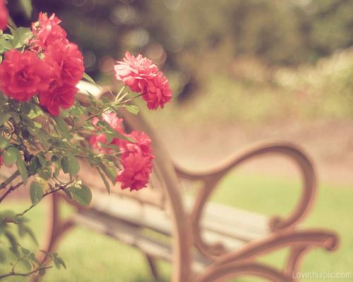 21841-Vintage-Like-Flowers.jpg