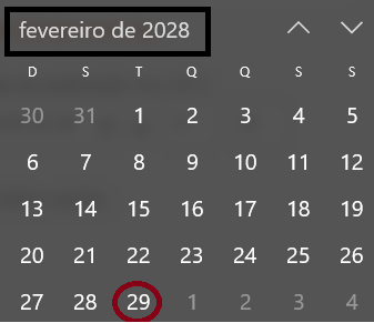 carnaval2028bissexto.png