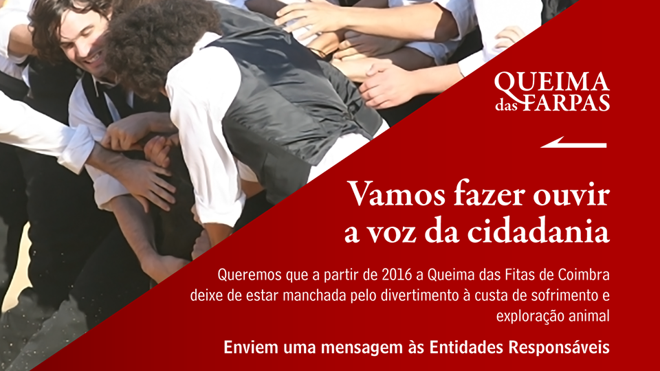 QUEIMA DAS FARPAS.png
