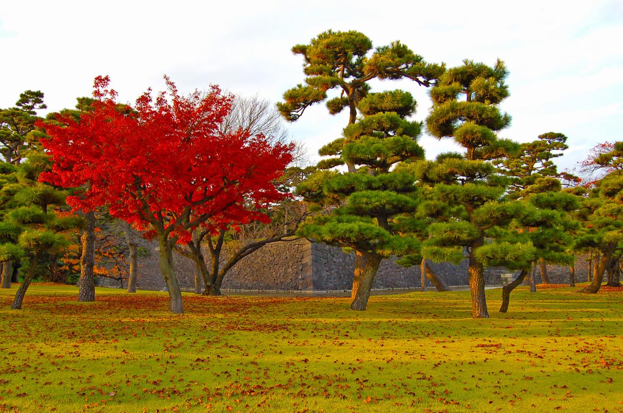 Jardins do Castelo de Osaka