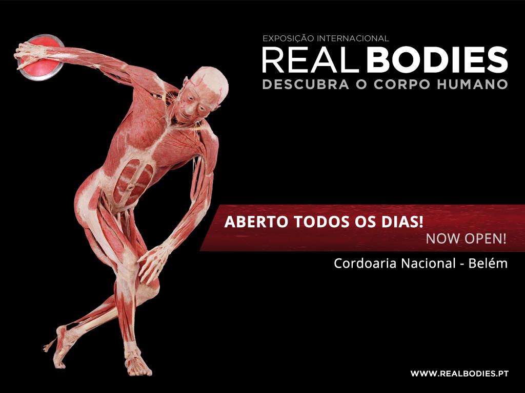 REAL BODIES_1024x768.jpg
