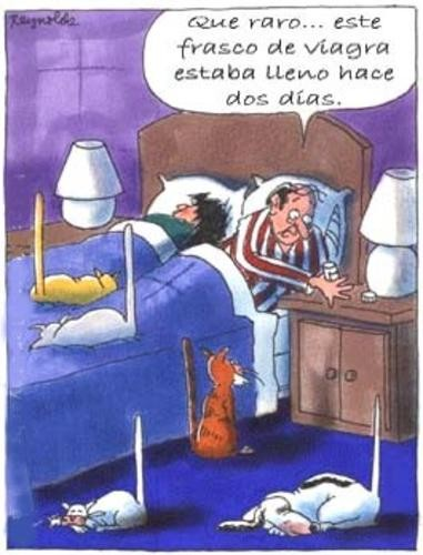 viagra-gatos.jpg