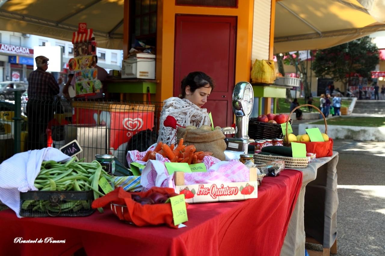 Feira Saloia Agualva Maio 2015 (008)