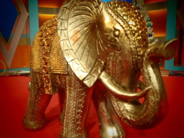elefante da sorte.jpg