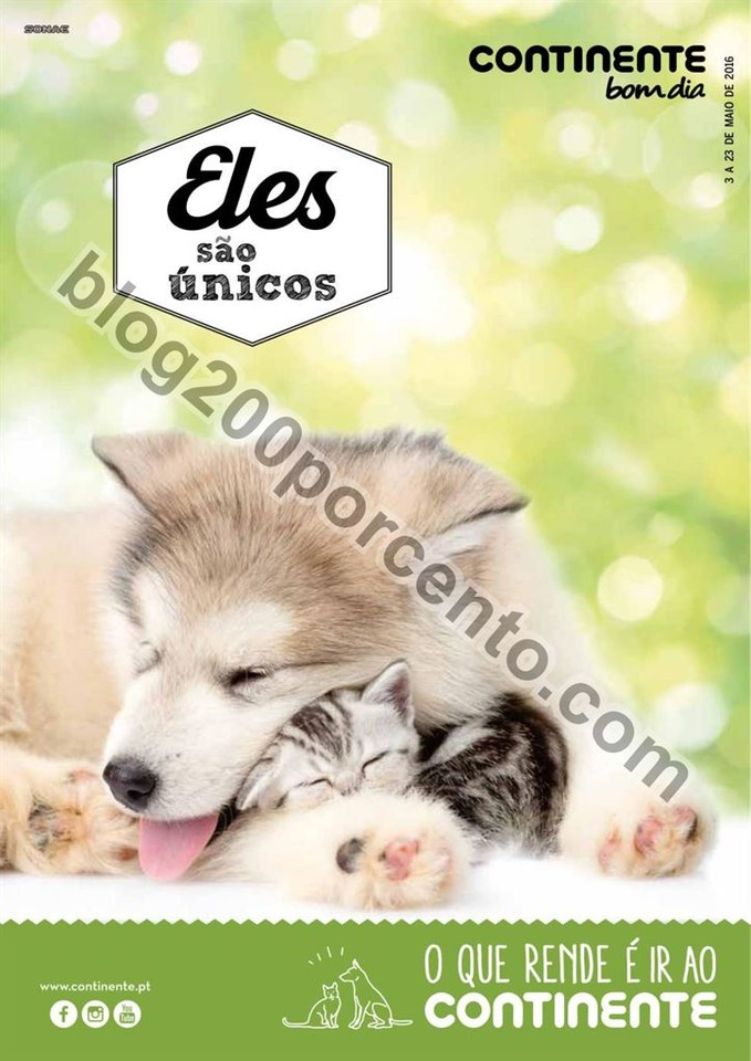Antevisão Folheto CONTINENTE - BOM DIA Extra Pets