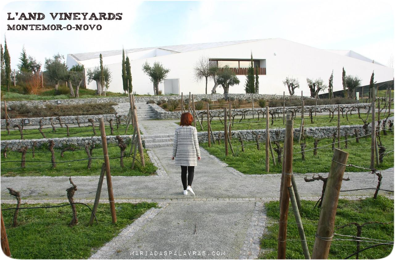 L'AND VINEYARDS - Odisseias | Maria das Palavras.com