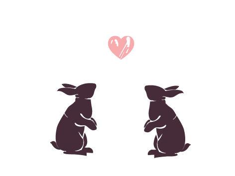 coelhos.jpg
