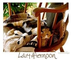 lazyrainyafternoon.jpg