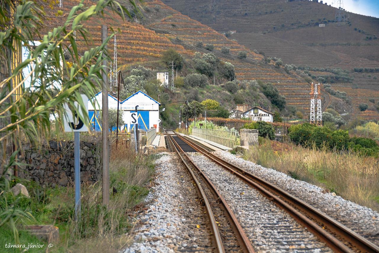 21.- 2010 - Linha_Corgo-Povoação-Régua 207.jpg