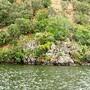 Rio Ponsul, margem esquerda 2.jpg