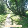 GeoBTT_Ecopista_Ponte_Lima_32