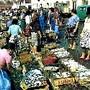 Lisboa ribeira caixas peixe