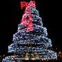 Árvore de Natal 2008