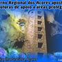 Governo_Regional dos Açores aposta em estrutura