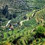 Vale de Mendis (4)