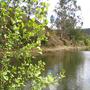 Rio Sardoura Lagoa Seixo.jpg