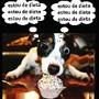 DietaDog.jpg
