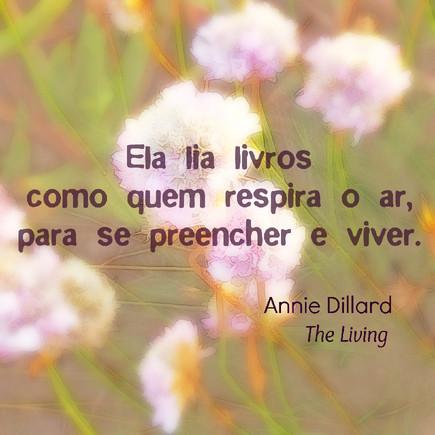 Entre aspas #10 Annie Dillard.jpg