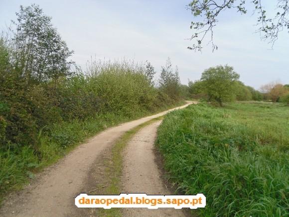 GeoBTT_BioRia_05