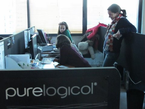 Purelogicol 2.jpg