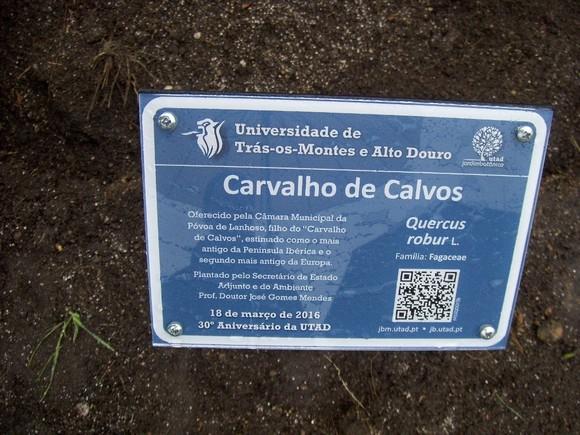 Placa Carvalho de Calvos na UTAD 1