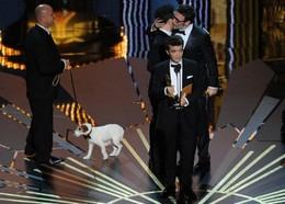 «O Artista» venceu o Óscar de Melhor Filme