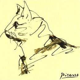 Picasso gato esboço.jpg