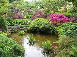 Jardim chines.jpg