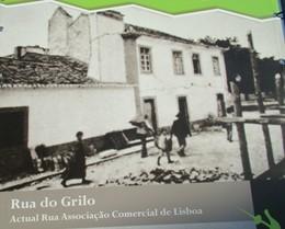 TERRAMOTO 1909